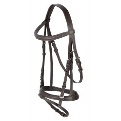 Covalliero Bridle Standard Seal brown