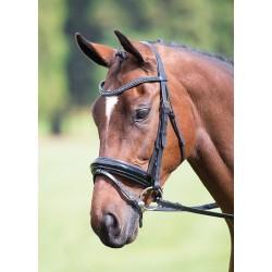 Shires Blenheim caveçon muserolle poney COB plein ** noir ou Havane **