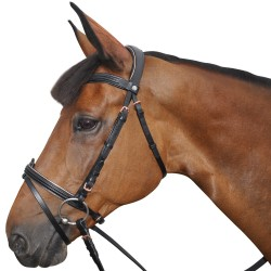PINK GOLD Canter snaffle
