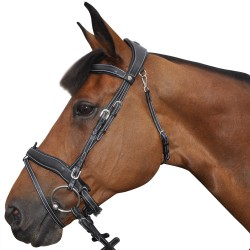 Comfort Flags & Cup Snaffle