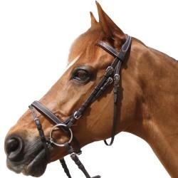 Privilege Equitation Grandville Snaffle Flash NB