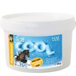 Ice Cool NAF