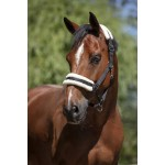 Norton Mouton synthétique doux headcollar Black