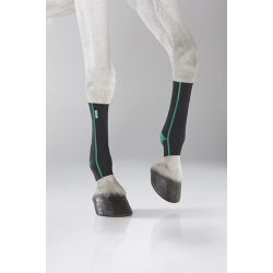 EQUICROWN ACTIVE - FORE