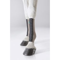 EQUICROWN FIT silver - HIND