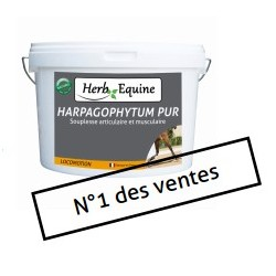 Herb Equine Harpagophytum Pur Solution
