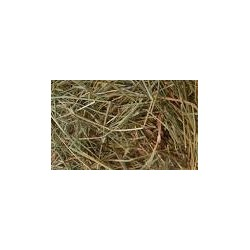 Natural Pasture Hay - 50 Bags of 11 kg