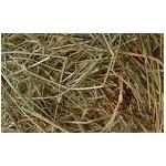 Natural Pasture Hay - 50 Bags of 11 kg