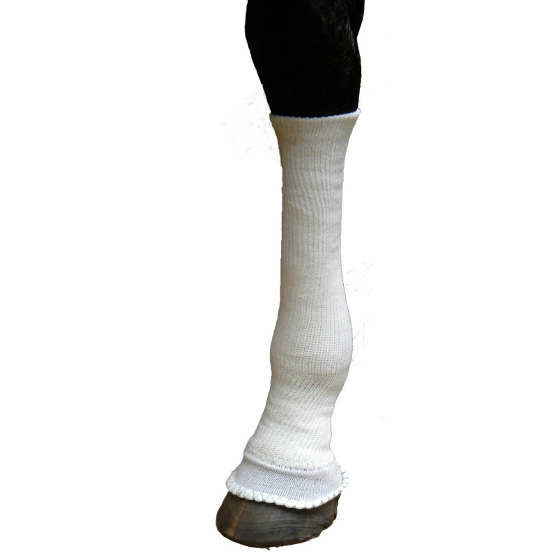 Silver Whinny Sox For Horses