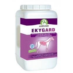 Ekygard Audevard