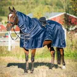 CAFFREY RIDING RUG