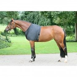 Therapeutic Equine Shoulder Guard Back On Track