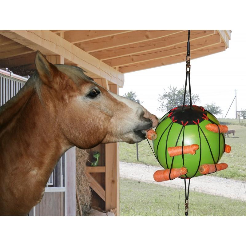 balle anti ennui jouet pour cheval au box. Black Bedroom Furniture Sets. Home Design Ideas
