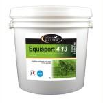 equisport 4.13 Horse Master
