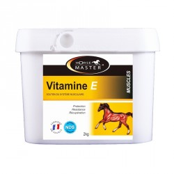 Vitamina E Horse Master