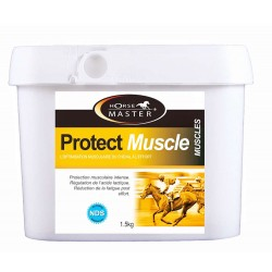 Protect Muscle Horse Master