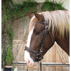 BRIDON CHEVAL DE TRAIT CUIR