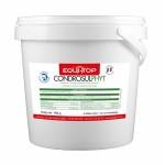 Condrosulphyt Equi-Top