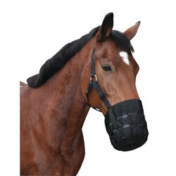 MUZZLE WITH HEAD COLLAR