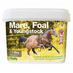 MARE FOAL & YOUNGSTOCK