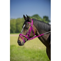NORTON SYNTHETIC BRIDLE Pink neon